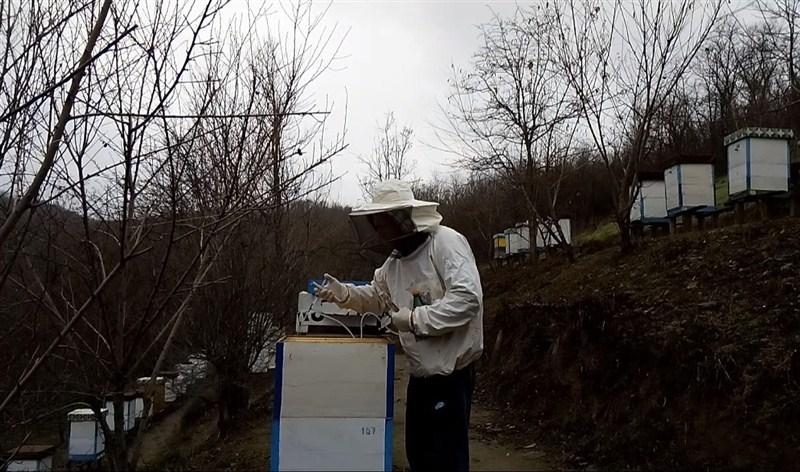 Tokom ovog perioda, čime i kako se tretiraju pčele protiv varoe ???